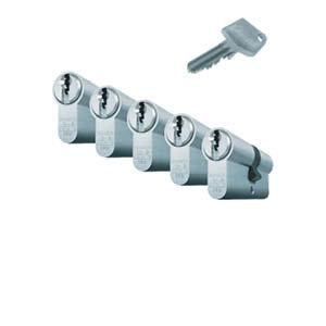 5 gelijksluitende cilinders